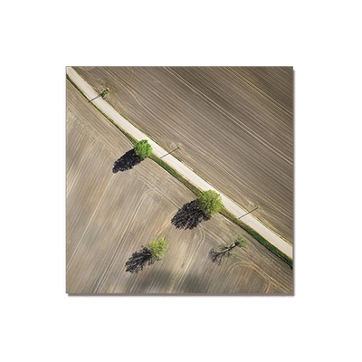 Landscape Oil Painting - I - Image 2