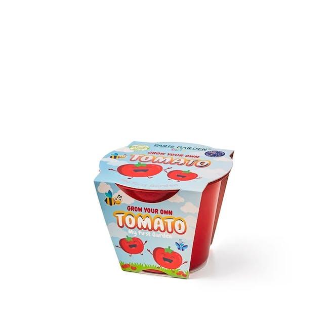 Kids Biodegradable Pot: Tomato - 0