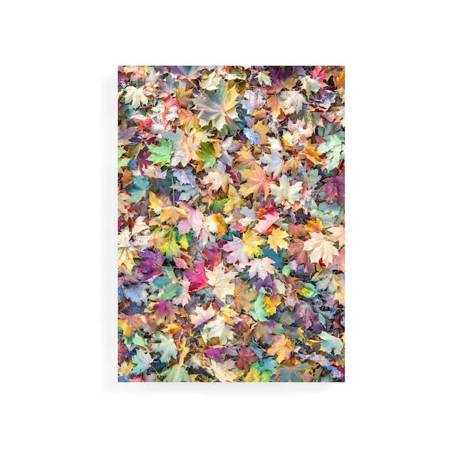 Florae Art Print on Stretched Canvas 50cm by 70cm - Maple Leaves - 0