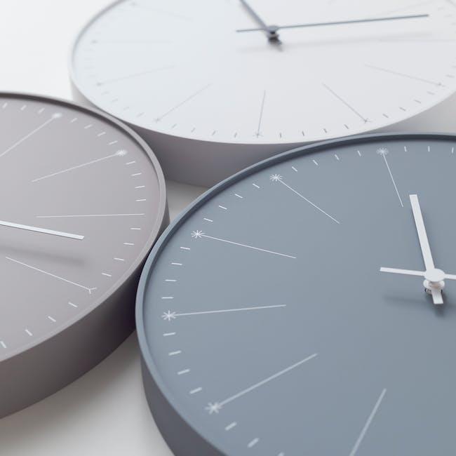 Dandelion Clock - Gray - 2