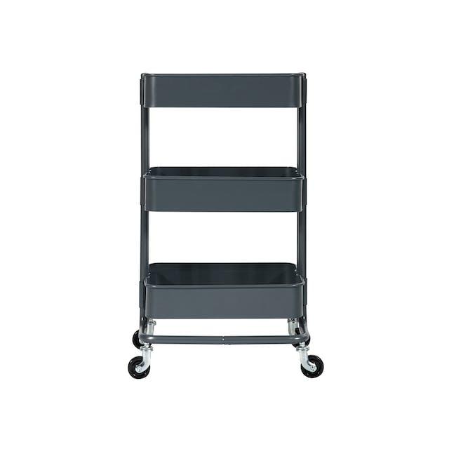 Snyder Trolley - Carbon - 1