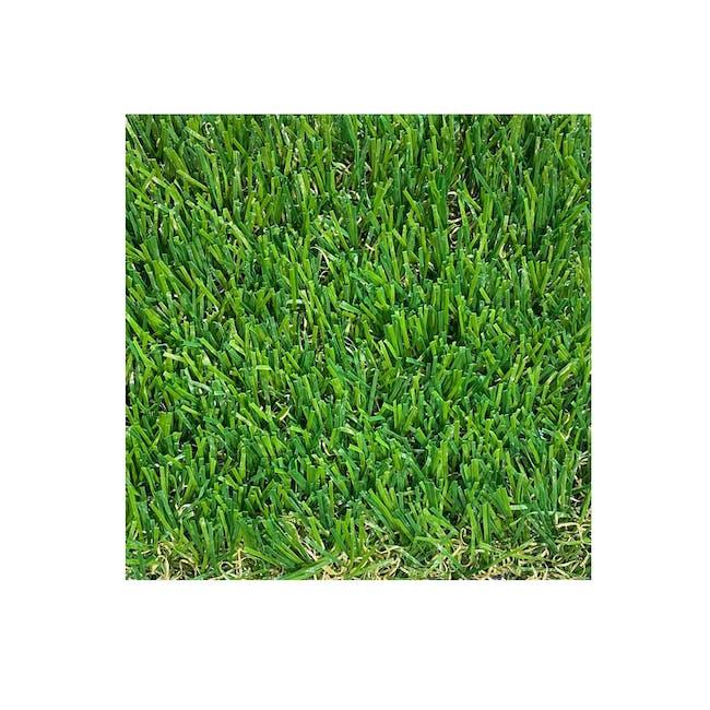 Meadow Grass Carpet - 0