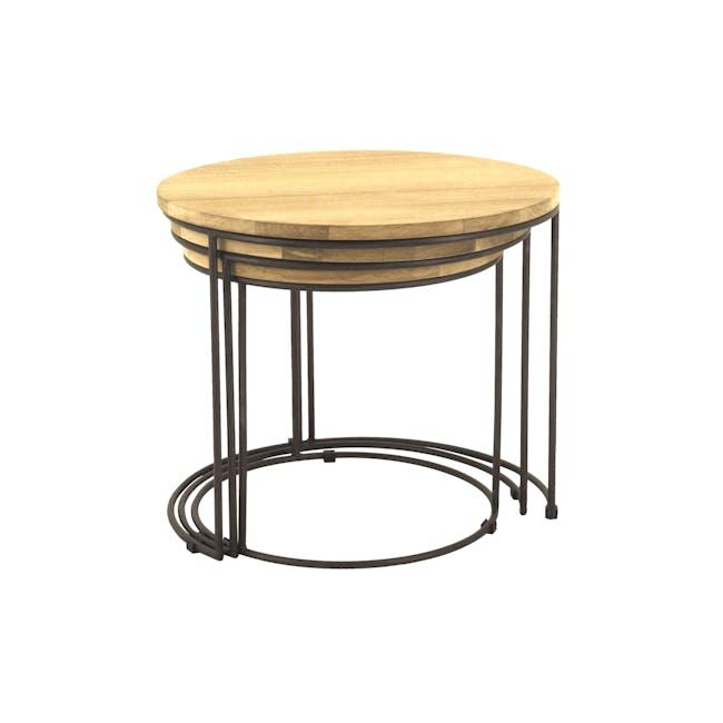 Eddie Nesting Coffee Table - 2
