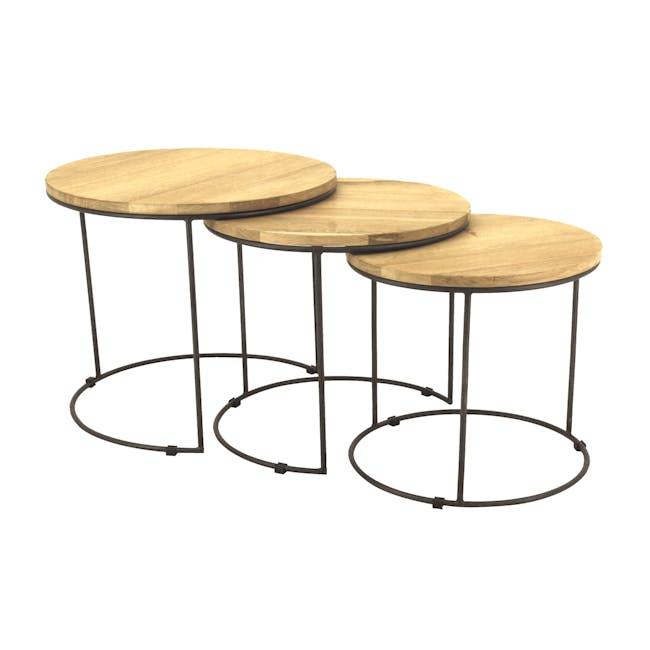 Eddie Nesting Coffee Table - 1