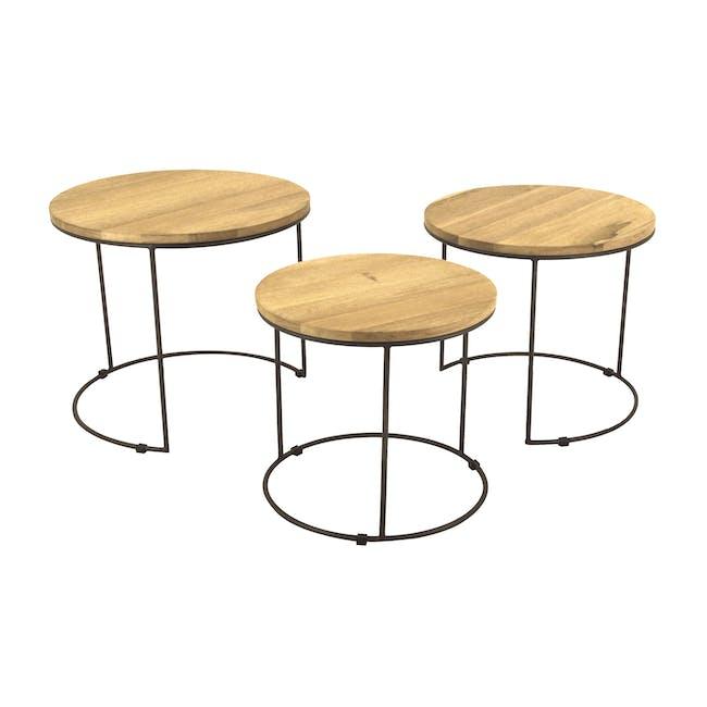 Eddie Nesting Coffee Table - 0