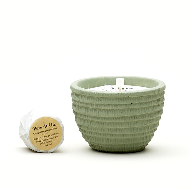 Pass It On Plantable Candles - Alps - 4