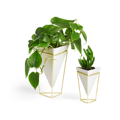 Trigg Tabletop Vessel (Set of 2) - Brass - Image 2