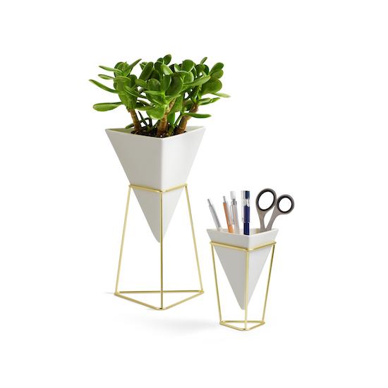 Umbra - Trigg Tabletop Vessel (Set of 2) - Brass