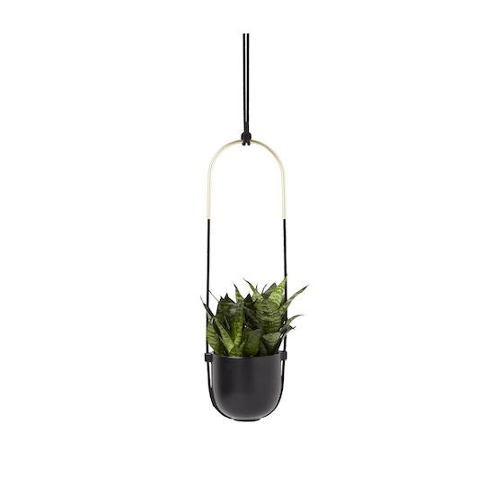 Umbra - Bolo Hanging Planter - Black, Brass