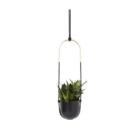 Umbra - Bolo Hanging Planter - Black, Brass