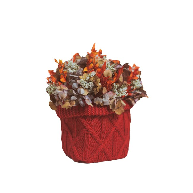 Red Preserved Flowers Knitted Pot - Design 2 - 0