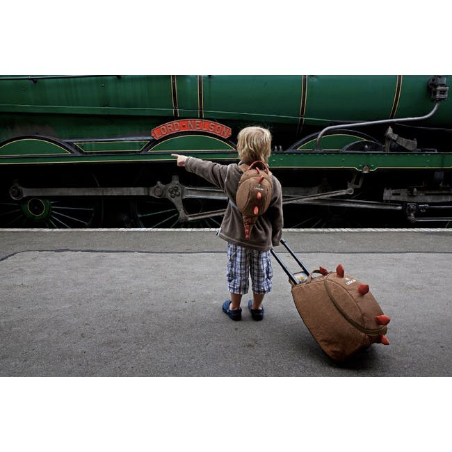 LittleLife Animal Toddler Backpack - Dinosaur - 1