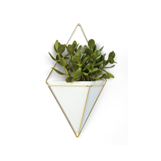 Umbra - Trigg Large Wall Vessel - Brass