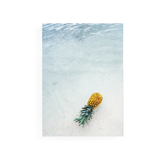 1688 - Tropical Art Print on Stretched Canvas 50cm by 70cm - Pineapple