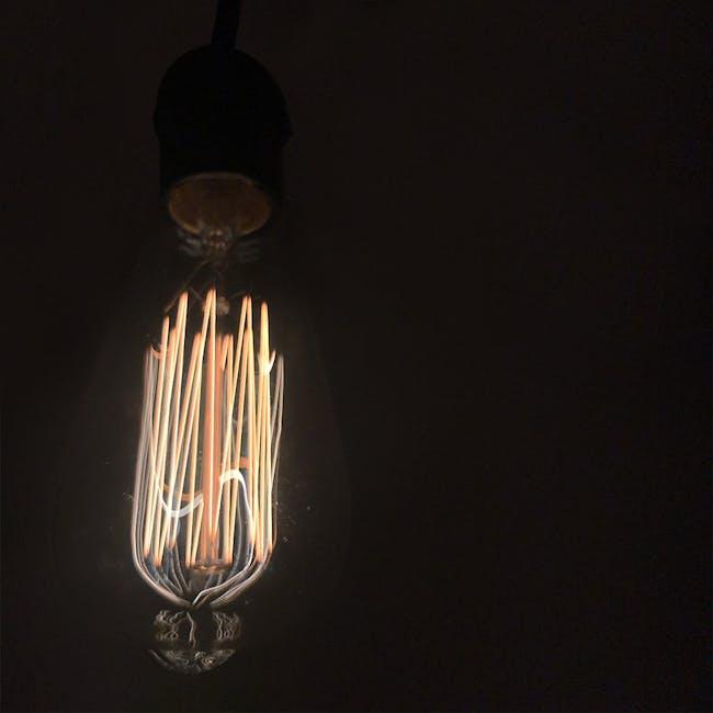 Edison ST64 Squirrel Cage Filament Bulb - 6