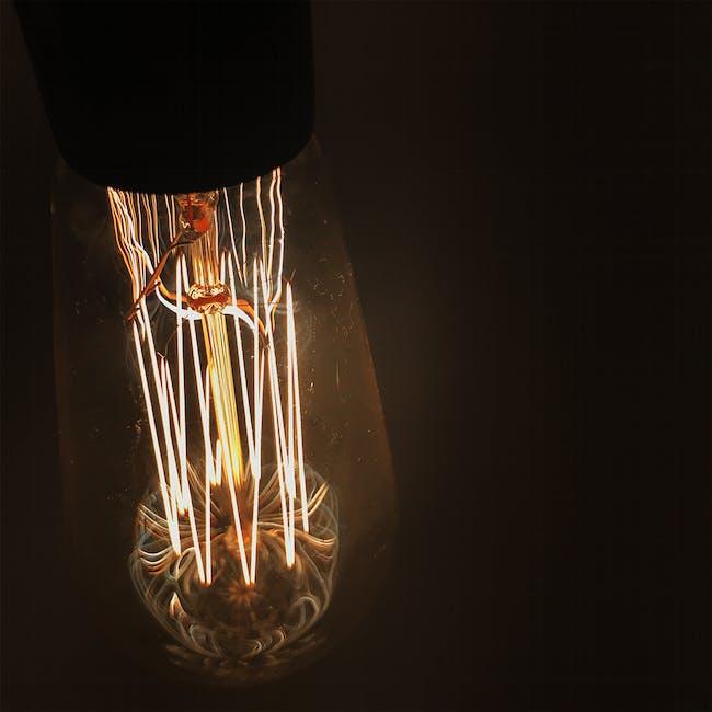 Edison ST64 Squirrel Cage Filament Bulb - 5