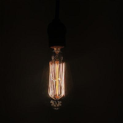 Edison ST64 Squirrel Cage Filament Bulb