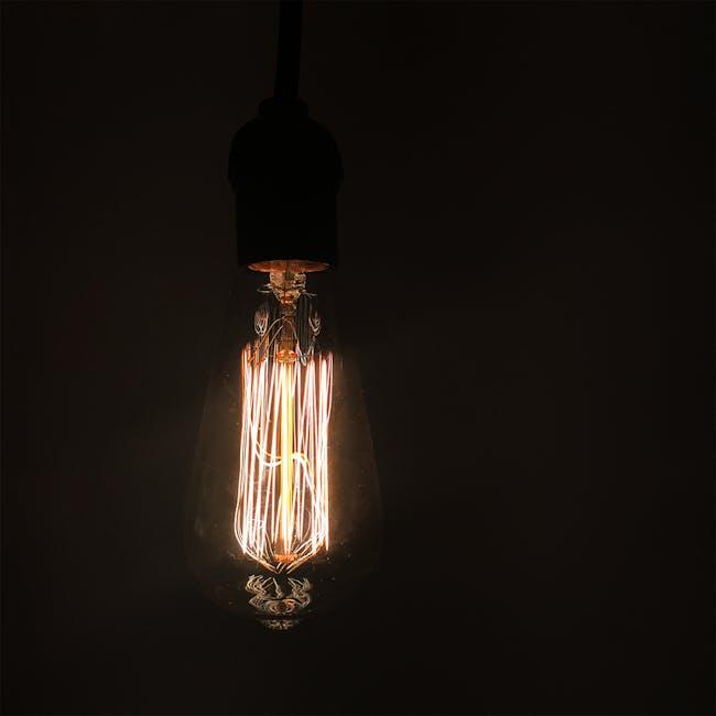 Edison ST64 Squirrel Cage Filament Bulb - 7