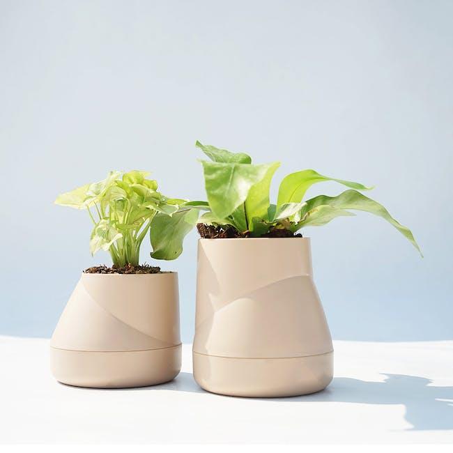 Large Hill Pot - Cream - 1