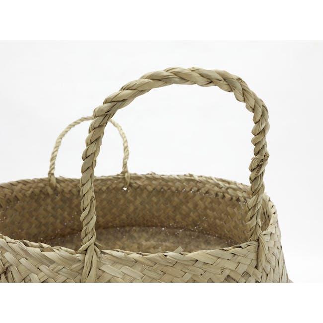 Serano Basket - White - 3