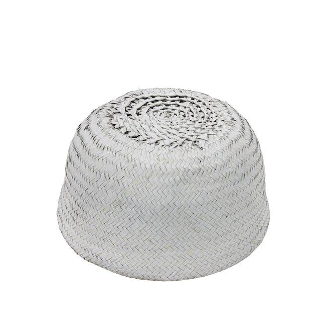 Serano Basket - White - 5