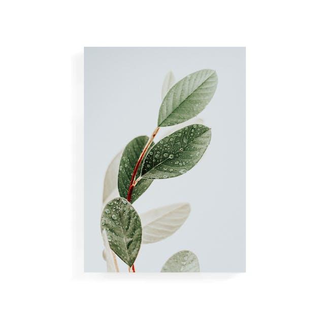 Florae Art Print on Stretched Canvas 50cm by 70cm - Petrichor - 0