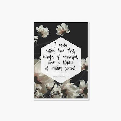 Steel Magnolias Poster Print