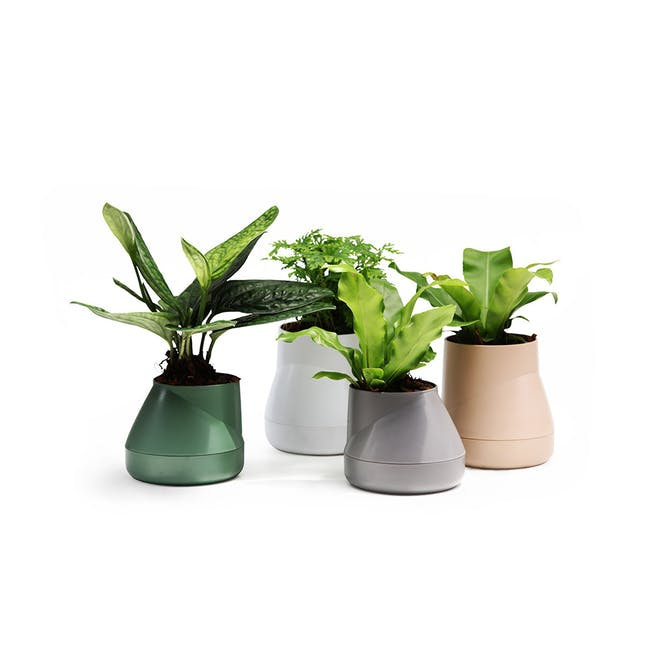 Large Hill Pot - Grey - 3