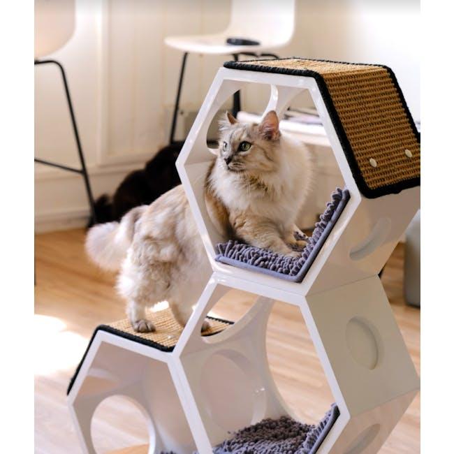 Pet Series - Mewwy Go Round - 5