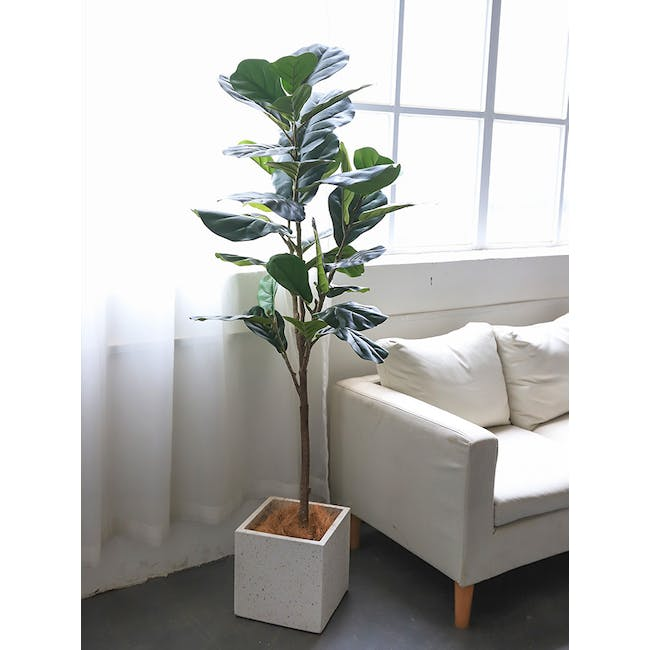 Potted Faux Fiddle Leaf Fig Tree 150 cm - 5