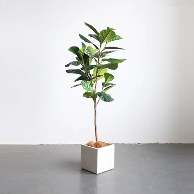 Potted Faux Fiddle Leaf Fig Tree 150 cm - 1