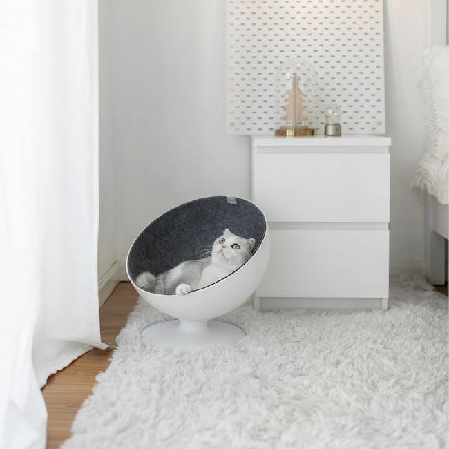 Cat Boss Chair - 2