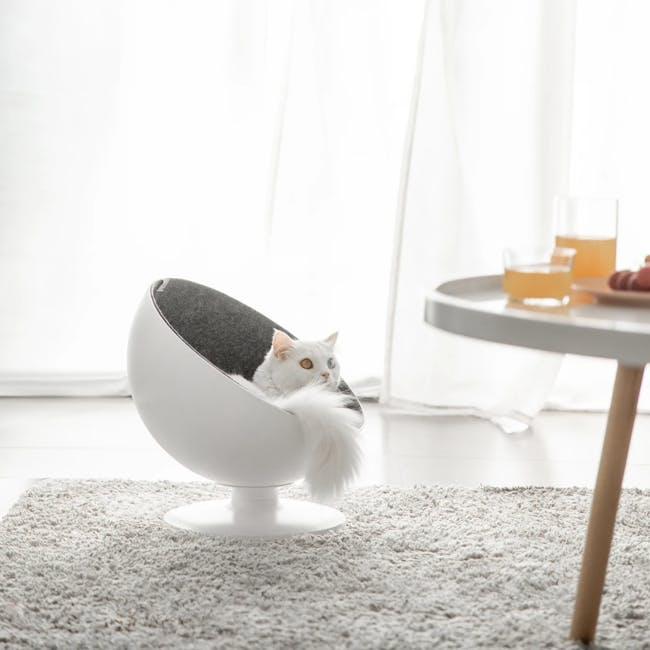 Cat Boss Chair - 1