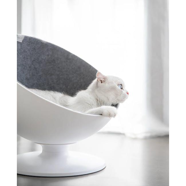 Cat Boss Chair - 3