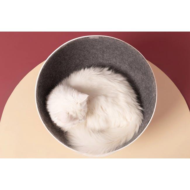 Cat Boss Chair - 5