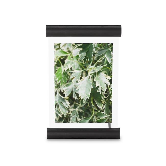 Scroll Photo Display 5 x 7 - Black - 2