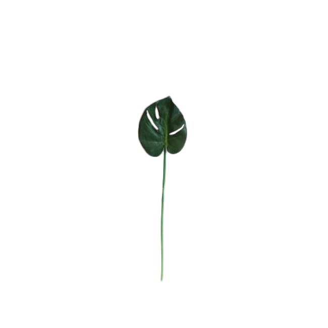 Faux Tropical Leaf - Assorted (Set of 5) - 5