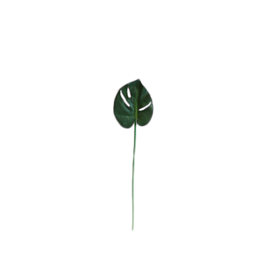 1688 - Faux Monstera Leaf - Small