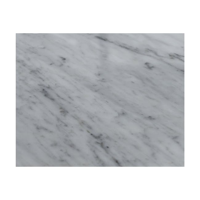 Carson Marble Dining Table 2m - 1