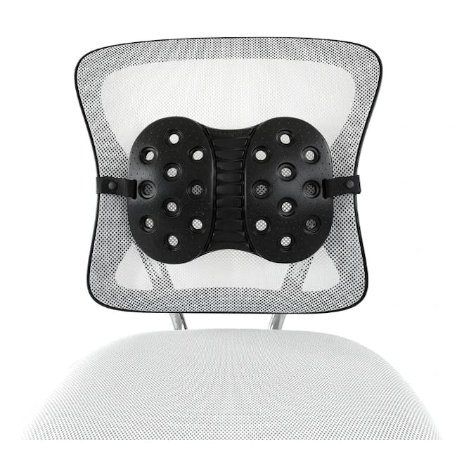 BackJoy Perfect Fit Lumbar Support - 2