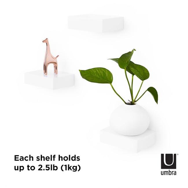 Showcase Floating Shelf - White (Set of 3) - 5