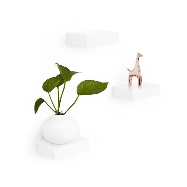 Showcase Floating Shelf - White (Set of 3) - 0