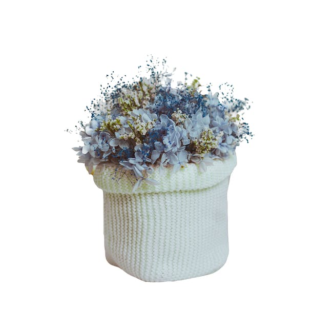 White Preserved Flowers Knitted Pot - Design 2 - 0