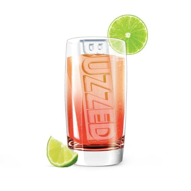 Zoku Party Ice Tray - 1
