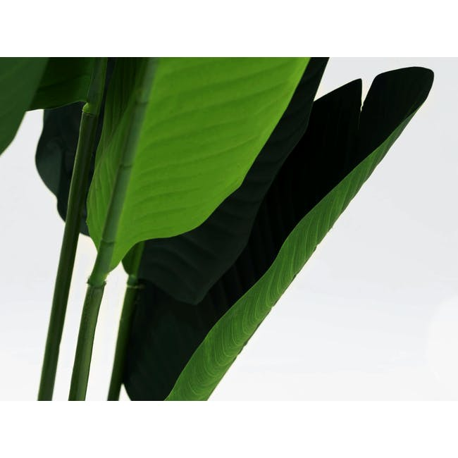 Potted Faux Traveller's Palm Tree 150 cm - 1