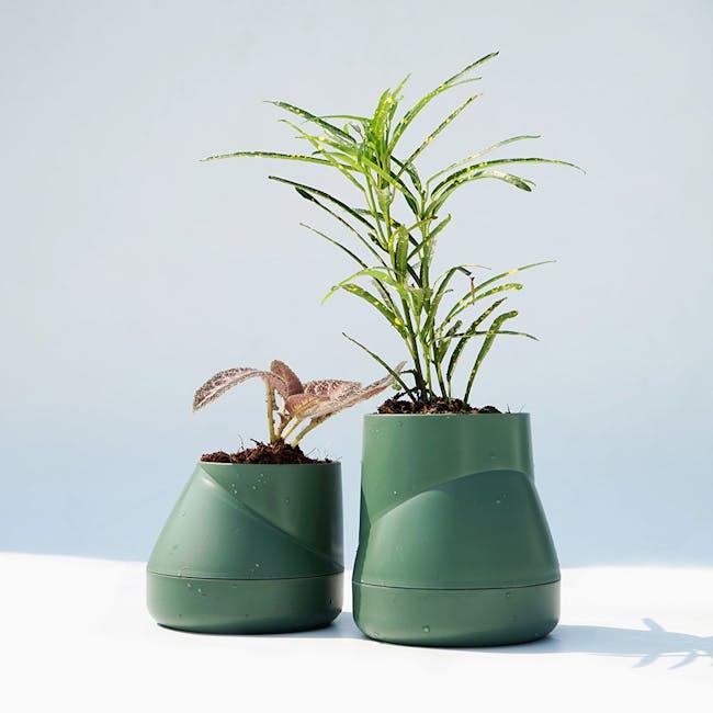 Large Hill Pot - Olive - 1