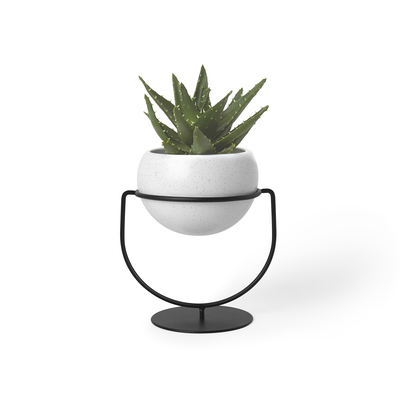 Nesta Wall & Desk Planter - Image 1