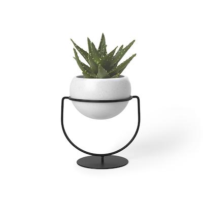 Nesta Wall & Desk Planter - Image 1
