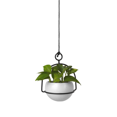 Nesta Wall & Desk Planter - Image 2