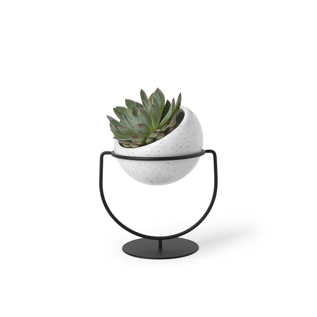 Nesta Wall & Desk Planter - 5